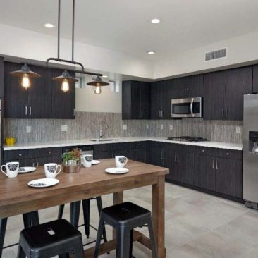 Pepperviner Park- Modern Kitchen